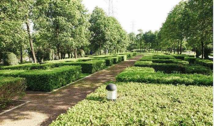 Khuân viên xanh tại Chung cư The One Residence